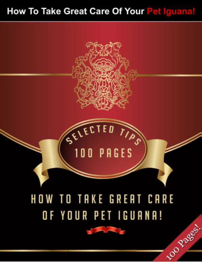 Take Great Care Of Your Pet Iguana With These Selected Tips