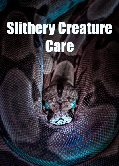 Slithery Creature Care